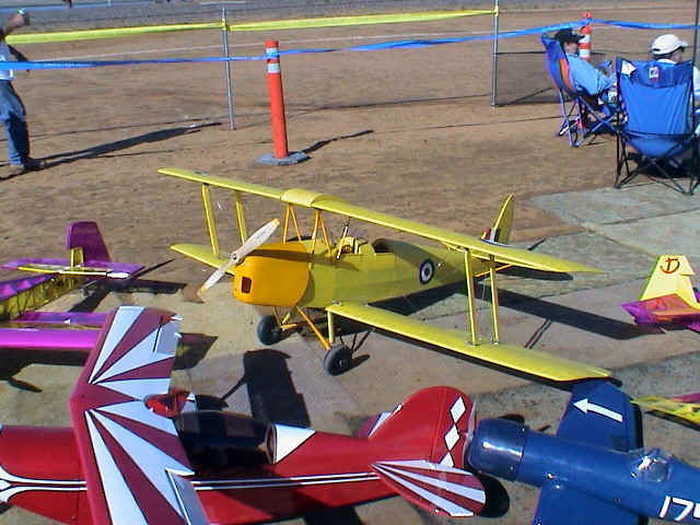 tigermoth.JPG (189784 bytes)